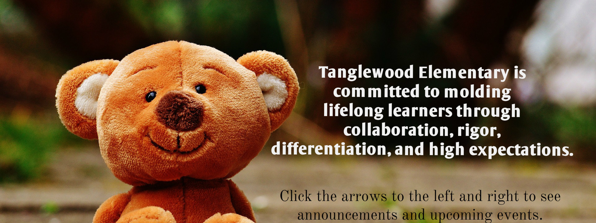 Tanglewood Mission Statement